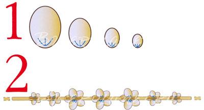 Схема к Цветам из пластикового геля